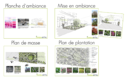 plan_plantation_masse