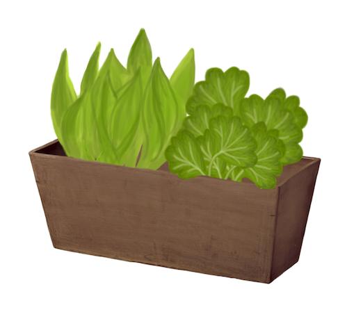 pr parer son sol pour planter ou cultiver fiche jardinage greenastic. Black Bedroom Furniture Sets. Home Design Ideas