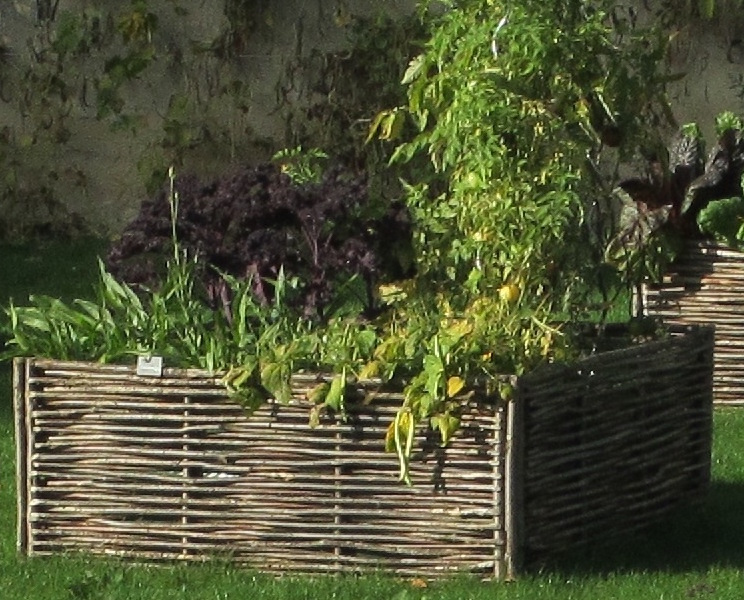 Cr er un carr potager fiche jardinage greenastic for Creer son carre potager