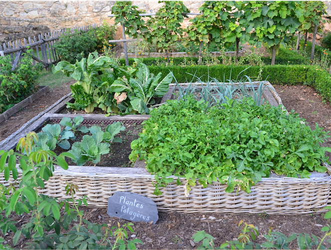 potager_permaculture