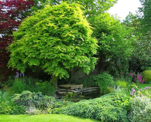 jardin_anglais