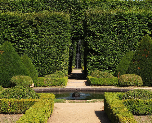 jardin_francais