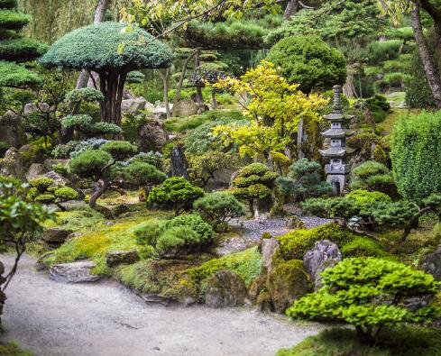jardin_japonais