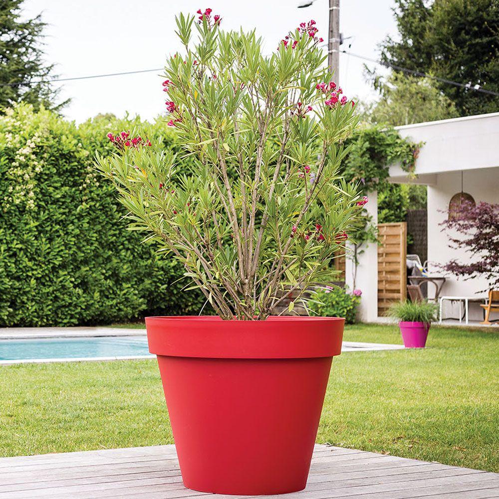 Plantes Fleuries En Pot Exterieur quel matériau faut-il choisir pour ses bacs et pots à fleurs